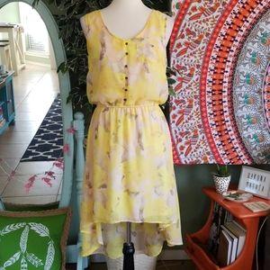 Mossimo Floral Sheer hi-low hem dress